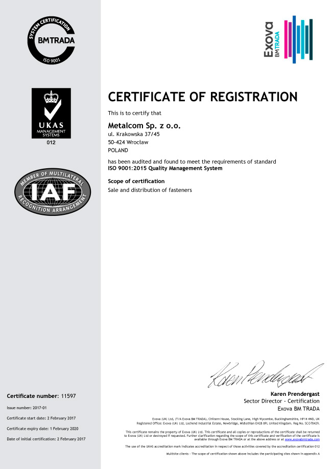 ISO 9001 ENG (2)