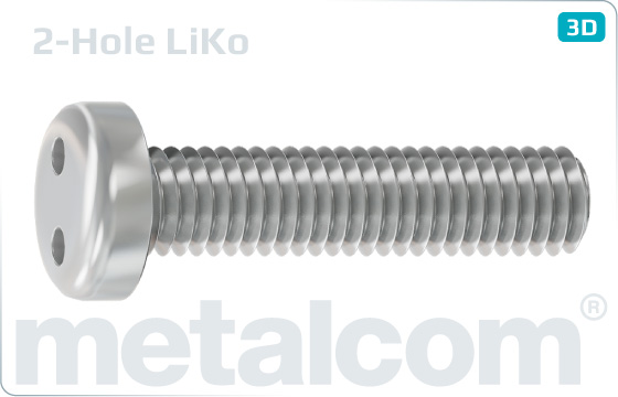 Security screws two hole drive pan head - LiKo