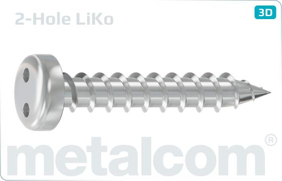 Sicherheitsschrauben Blechschrauben mit Linsenkopf und Zweiloch-Antrieb - LiKo