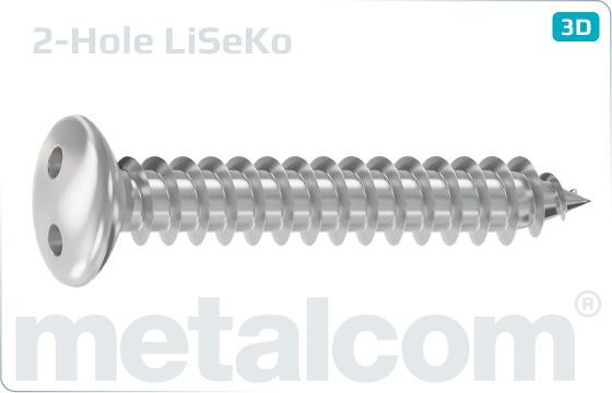 Sicherheitsschrauben Blechschrauben mit Linsensenkkopf und Zweiloch-Antrieb - LiSeKo