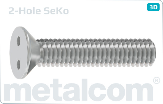 Security screws two hole drive countersunk head