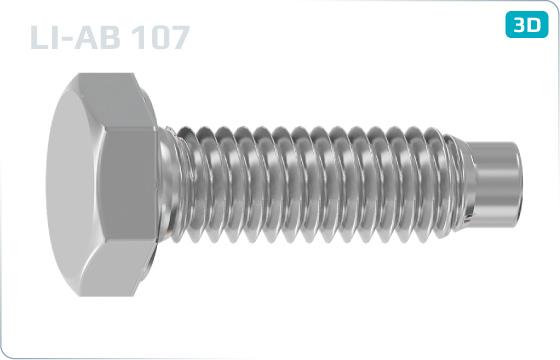 Šrouby se šestihrannou hlavou pro trubkové lešení - LI-AB-107