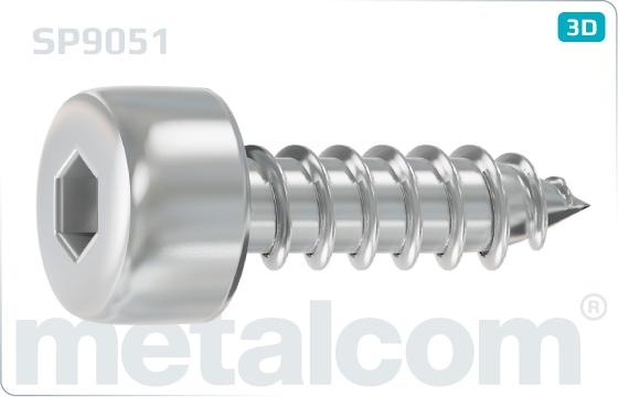 Šrouby do plechu s válcovou hlavou a vnitřním šestihranem (DIN 912) - SP9051