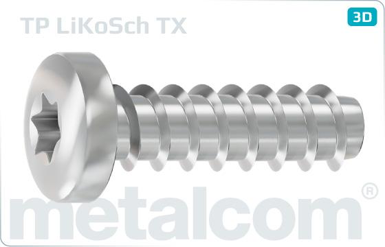 Skrutky do plastu s poľgulatou hlavou a drážkou TORX - TX