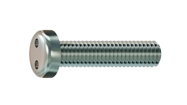 Security screws two hole drive pan head