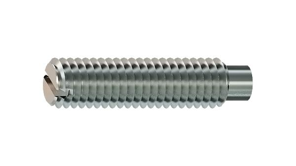Set screws slotted with full dog point