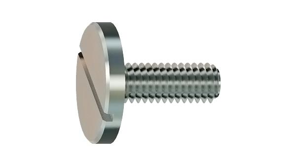 Slotted screws cheese large head