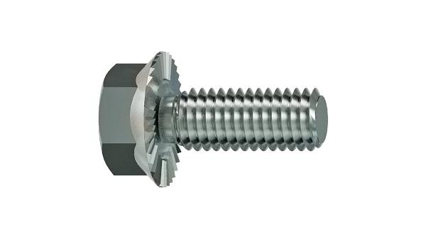 Hexagon self locking flange bolts with teeth (Sperrzahn)